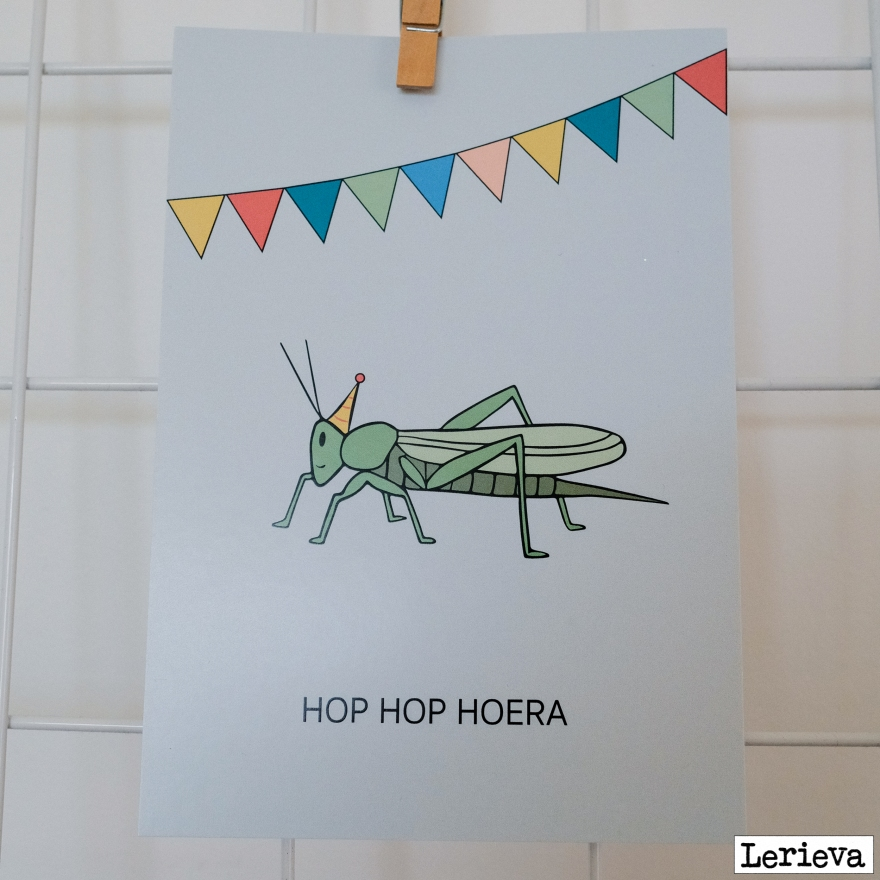 Hop hop hoera_lerieva